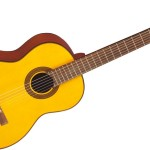 Takamine G124 Review